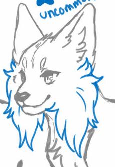 Medium Cheek Fur