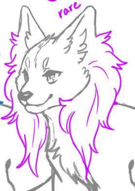 Long Ear Fur